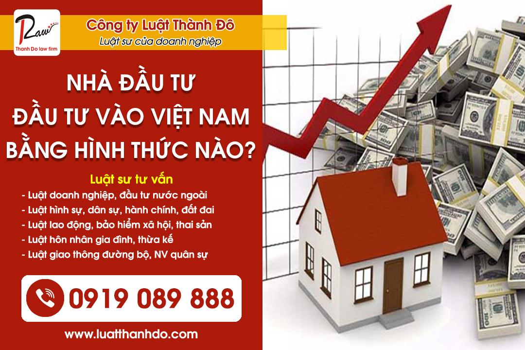 Nhà đầu tư có thể đầu tư vào Việt Nam bằng hình thức nào?